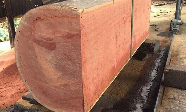 Khúc gỗ xoan đào